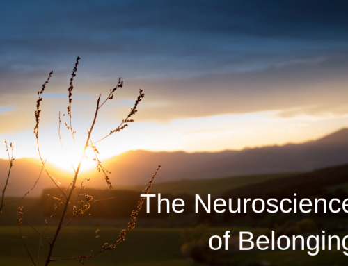 The Neuroscience of Belonging